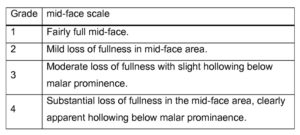 Table 1. Responders were those who achieved at least a 1-point improvement on the Mid-Face Volume Deficit Scale.